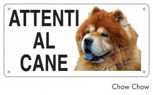Attenti al cane Chow Chow