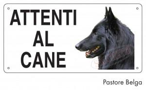 Attenti al cane Pastore Belga