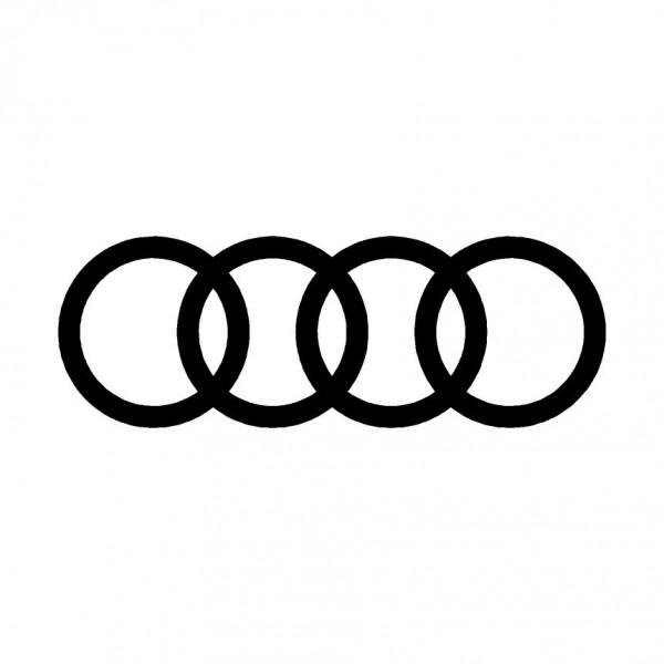 "Logo ""Audi"" per pinze freni"
