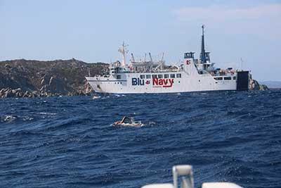 Il traghetto BluNavy della tratta Bonifacio-Santa Teresa di Gallura